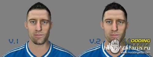 FIFA 14 CAHILL UPDATE Face