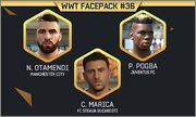WWT Facepack #36 by WWT