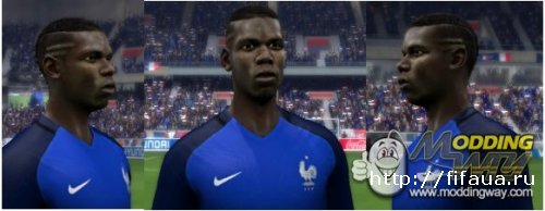 Paul Pogba Euro 2016 Face(on Request)