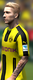 Tatto Marco Reus for FIFA14